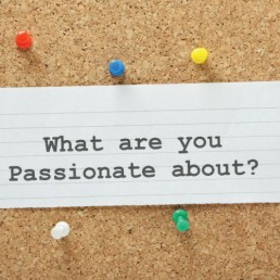 infographic what are you passionate about