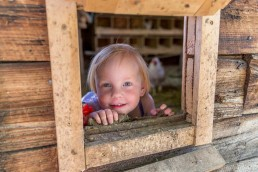 Child looking through window of chicken coop