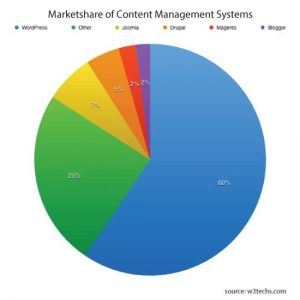 wp marketshare piechart 300x300 - Why We Recommend WordPress