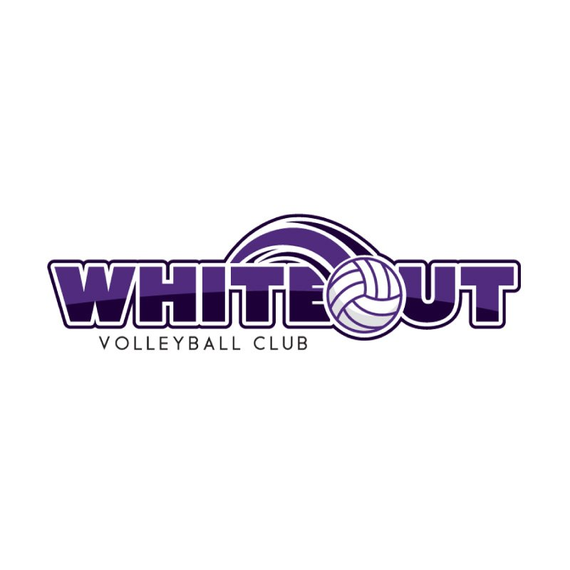 hive 180 logo development steamboat colorado whiteout volleyball club - Branding Development