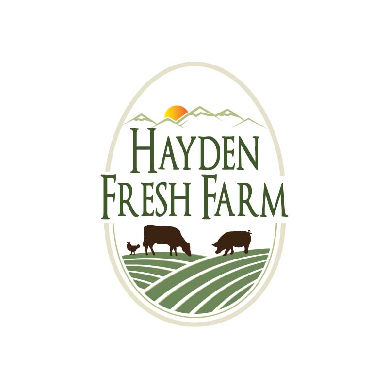 hive 180 logo development steamboat colorado hayden fresh farms - Branding Development